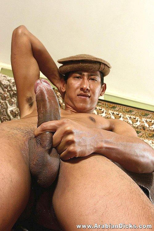 Hung Arabian Stud Jabir Hassam